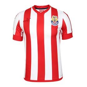 Jersey Chivas de Guadalajara Puma 115 years 2021